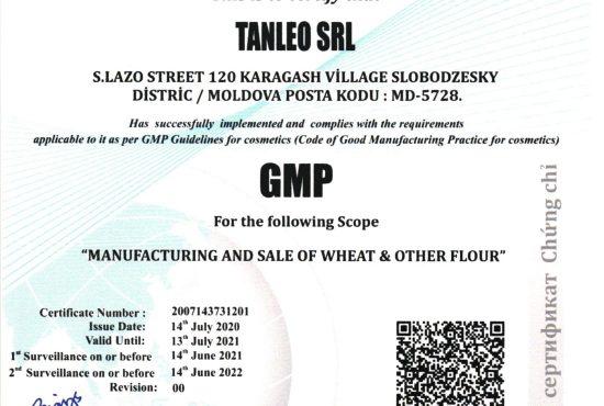 GMP Tanleo 2020